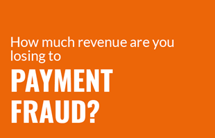The Size of Payment Fraud